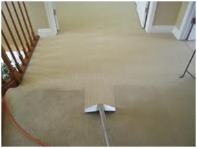 powerful carpet cleaning tool